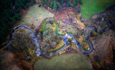 Meandry rzeki Mierzawa