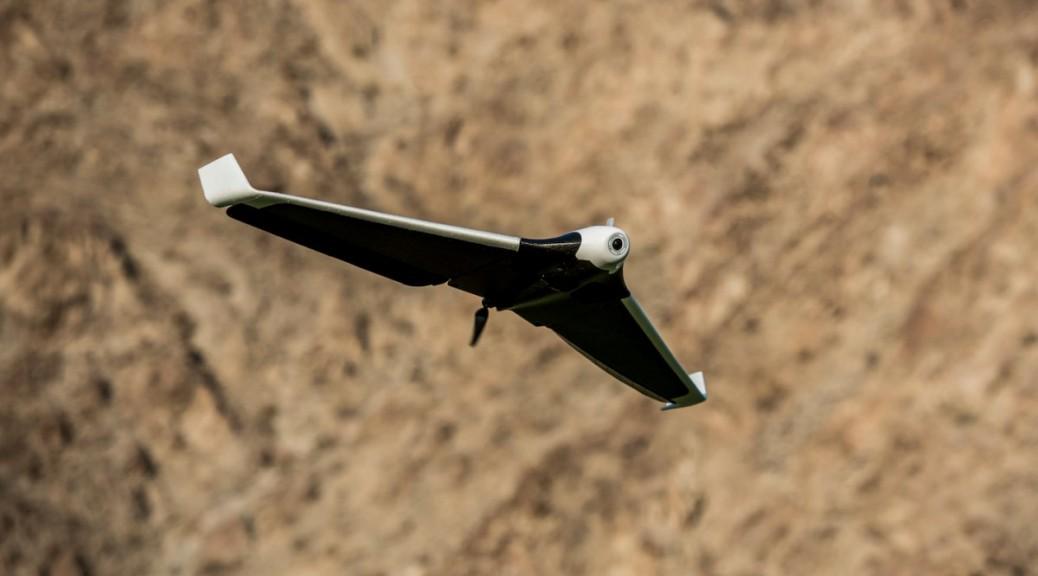 parrot disco dron